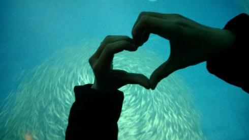 SeafoodLove