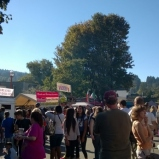 Issaquah Salmon Days Festival