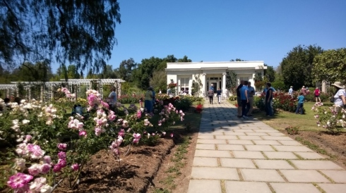 The Rose Garden Tea Room (2)